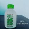 น้ำมะนาวขวดอ้วน 250 ml 75 ขวด